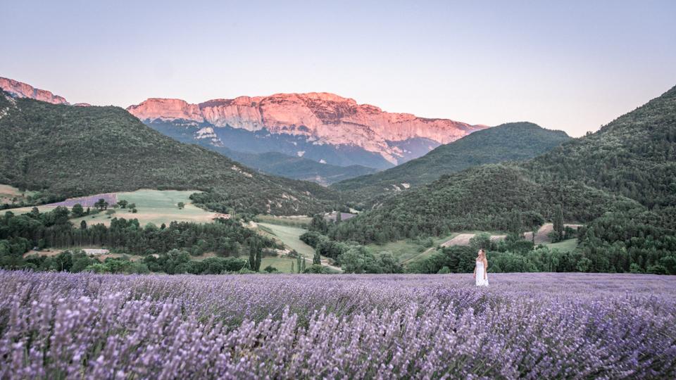 Parc naturel régional du Vercors : la Lavande à la Montagne